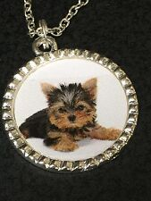 """Yorkshire Terrier Puppy on White Charm Tibetan Silver with 18"""" Necklace BIN"""