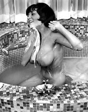 8x10 Print Sexy Model Pin Up Brunette Bath Tub Mega Busty 1960's Nudes #28787DB