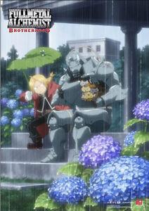 Fullmetal Alchemist Ed and Al In the Rain Poster Wall Scroll 27.8 x 19.7 inches