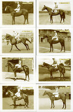 DERBY WINNERS 1953-1968 Collectors Card Set by GDS Cards - Pinza, Never Say Die