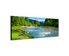 120x40cm Wandbild Panorama Landschaft mit Bergen Bäumen Fluss Sinus Art