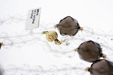 14K Yellow Gold Women's Natural White Brown Smokey Topaz Spacers Clasp Necklace