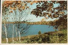 PHOTO POSTCARD FALL LAKE SCENERY IN MOUNTAIN OF SOUTH CENTRAL NEW YORK NY
