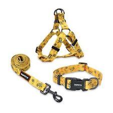New listing Dog Collar Harness Leash Set and Basic Collar, Adjustable Yellow Bee Medium