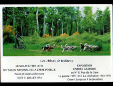 ISIGNY (14) CHIEN HUSKY Tractant VELO 3 ROUES en 1994 / Salon MOLAY-LITTRY