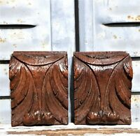Gothic acanthus leaves furniture ornament Antique french salvaged wood carving