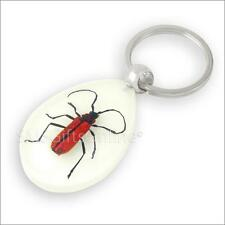 Fluorescent Acrylic Amber Red Longhorn Beetle Keyring Insect Keychain
