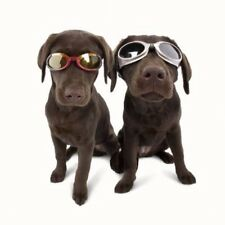 Dog Goggles by Doggles K9 Eye Protection Size Choice Choice Flexible Frames
