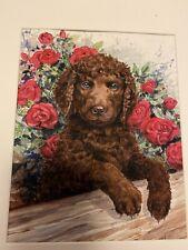 Irish Water Spaniel Puppy Ltd Ed 8x10 Print Signed Van Loan
