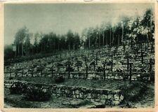 CPA Deutscher Soldatenfriedhof Breitenbach in Ob.-Els. 1928 vollkommen (393641)