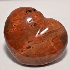 "2.6"" Petrified Wood Heart Fossil Reiki Healing Polished Palm Stone - Madagascar"