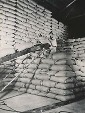 CHICAGO c. 1950 - Entrepôt Ouvriers Stockage Sacs de Grains U S A - NV 1307