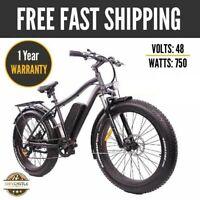Breeze Pro Fat Tire Electric Mountain Snow Bike, eBike 750W, 48V - Matte Black