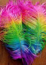 """Ostrich Feathers Plume Neon Rainbow Wedding Centerpiece Decor Crafts 18 - 20+"""""""