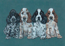 Hot Summer Sale! Beautiful English Cocker Spaniel Puppie Aceo print by Anne Hier