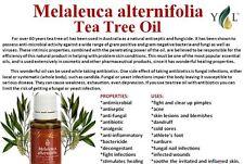 ** YOUNG Living Essential Oils ** Tea Tree (Melaleuca alternifolia) 15 ML 100% puro