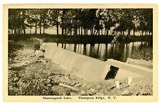 Thompson Ridge NY - DAM ON SHAWANGUNK LAKE - Postcard