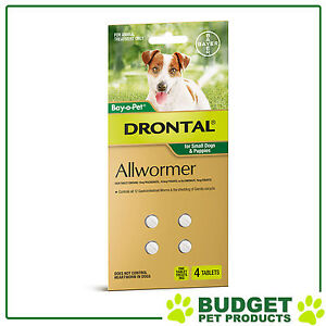 Drontal Allwormer Dogs Small & Puppies Up To 3kg 4 Tablets