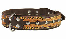 """Genuine Leather Dog Braided Studs Collar 1.75"""" wide  22""""-27"""" neck XLarges Dogs"""