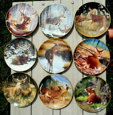 9 Danbury Mint Bob Travers Pride Of The Wilderness Whitetail Deer Plates
