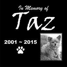 "Personalized Pet Stone Memorial Engraved Marker 12"" x 12"" Chihuahua Collie 2017"