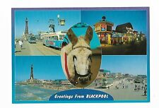 Dennis Print & Publishing Blackpool Postcard With Donkey Head