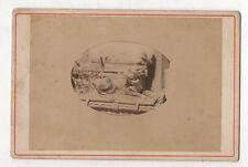 PHOTO ANCIENNE - CARTE CABINET - Petit Chien Assis Dog Ovale - Vers 1900 Albumen