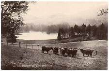 P.C On The Braes of Balquhidder Looking To Loch Voil Stirling perthshire R P