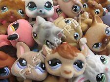 Littlest Pet Shop Lot of 3 RANDOM SURPRISE Fuzzy Fluffy Dog Cat Bunny BLEMISHED
