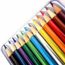 12 Metallic Colour Pencils Drawing Colouring Sketching Art Artist Draw Picture