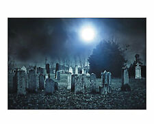 Halloween CEMETERY PLOT GRAVE YARD Backdrop wall covering Banner HAUNTED HOUSE