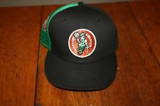 RARE! New Era NBA Cap Hat Boston Celtics Hardwood Classics Championship Snapback