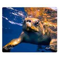 "Realfish H20 Series ""Sea Turtle"" Tempered Glass Cutting Board, Made in USA 12x15"