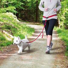 Ceinture de plomb pour les petites et moyennes chiens par trixie (12765)