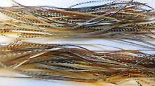 Whiting gordon griffiths hebert mineur sec selle plumes 100 pcs