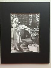 DOROTHY~TOTO & NIKKO~WIZARD OF OZ~8 x 10 Mat Print~PUPPY BASKET~NEW