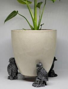 Laughing Kookaburra Feet4Pots Pot Plant Feet