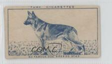 1949 Turf Famous Dog Breeds Tobacco Base #43 Alsatian Non-Sports Card 0f3