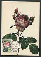 FRANCE MK 1962 FLORA ROSEN ROSE ROSES MAXIMUMKARTE CARTE MAXIMUM CARD MC d6064