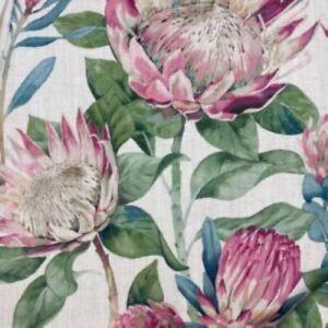 Sanderson, King Protea - Rhodera  Curtain Fabric, Material 100% Cotton