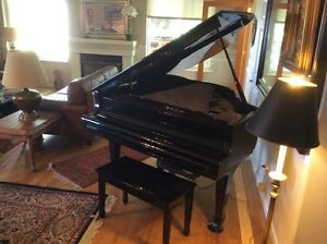 Baby Grand Piano with piano disc Young Chang