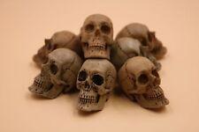 Resin Skull Model Kit Accessory for 1/6 Scale Action Figure Custom Scenes Set Up