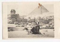 Sphinx & Pyramids Egypt 1955 RP Postcard 240a