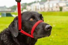 Gencon All in one Headcollar Lead Not Clip To Anti Stop Pull Soft Fits All Dog