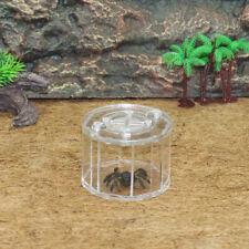 Spider Insect Reptile Tank Vivarium Cage Box Transparent Acrylic Terrarium