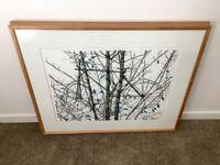 "ORIGINAL WATERCOLOR George Dombek ""Tour de Tree"" 2000 Artist Framed"
