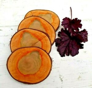 Natural Beautiful Cherry wood Coasters wooden discs craft Pyrography Wedding ECO