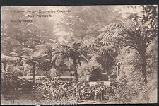 New Zealand Postcard - Recreation Grounds, New Plymouth Mb2293