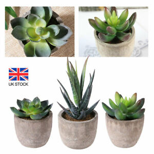 3Pcs Artificial Succulent Potted Plants Small Fake in Pots Indoor Outdoor Decor