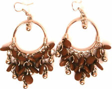 Hook Stainless Steel Drop/Dangle Stone Costume Earrings